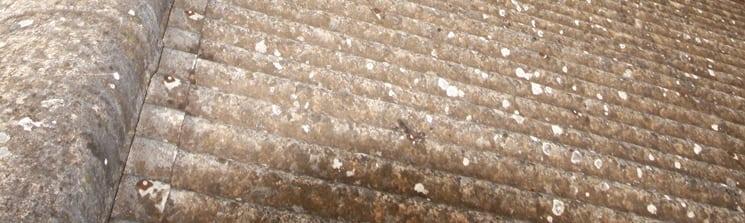 Asbestos-roof_IMG_1207_745