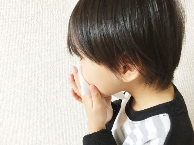 鼻をかむ子どもの画像