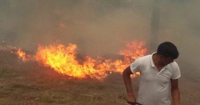 अच्छा काम:- एसएसबी जवानों ने बुझाई परिसर में पहुंची आग, साथ ही बचा लिया जवानों द्वारा पौधरोपित क्षेत्र 3