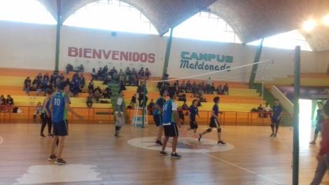 Campeonato voley_5