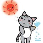 犬 熱中症 症状