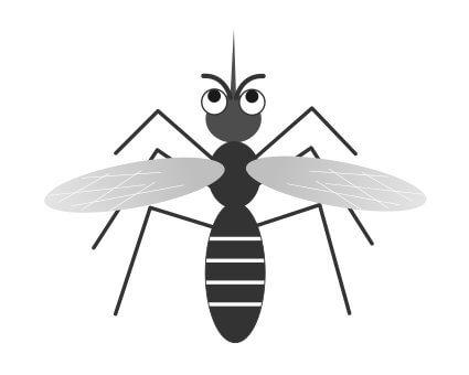 蚊 寿命 オス