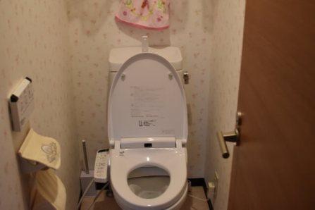 トイレ つまり 直し方 道具なし