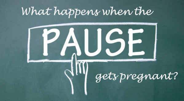 You are currently viewing What Happens When the Pause Gets Pregnant? (Online Summer Service)