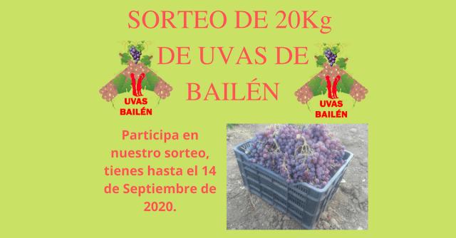 https://www.uvasbailen.es/p/sorteo.html