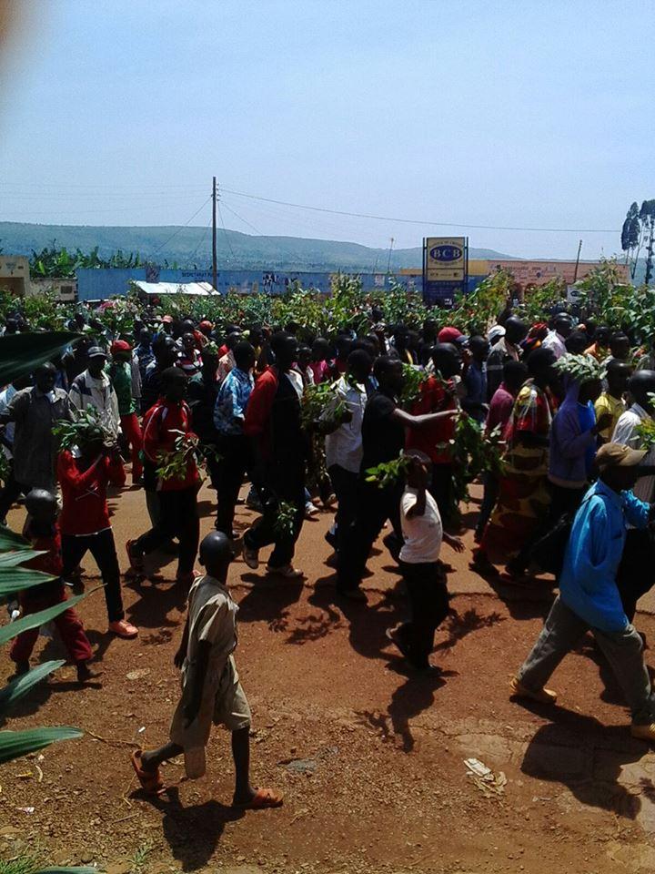 Marche contre le mendonge de Bernard Maingain_