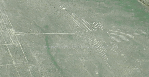 The Hummingbird, Nasca (Nazca) Lines, Peru. Visible Light Image (c) David Prutchi PhD