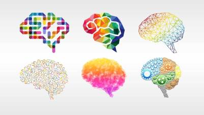 The picture above shows different interpretations of the brain in vivid colors.