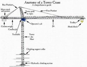 Crane installation a milestone in construction of