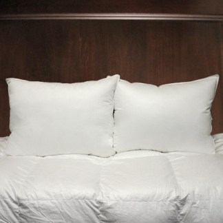 Esprit Pillow by Cuddle Down Products