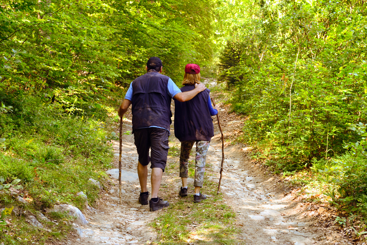 Two people are walking in the woods. This image helps exemplify the mission of the UW Multiple Sclerosis Rehabilitation and Wellness Research Center as one example of wellness.