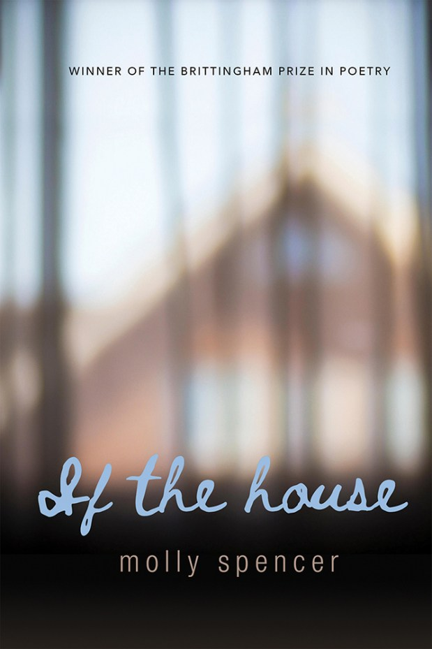 Cover image for If the House
