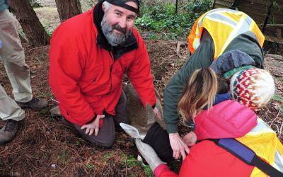 Deer Management Grant Funding