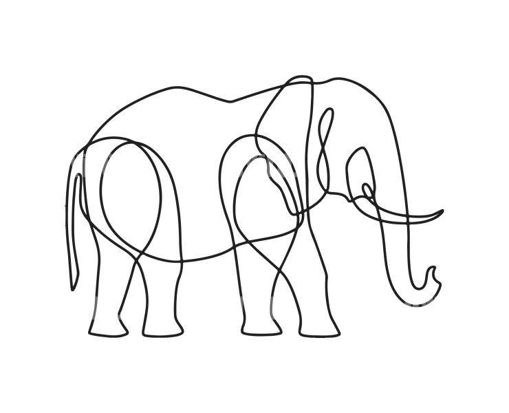 Line Drawing Elephant