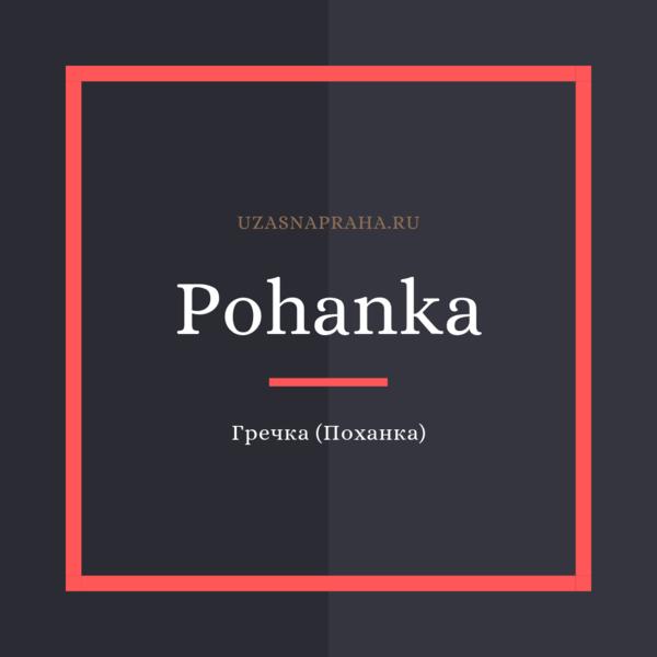 По-чешски гречка — Pohanka