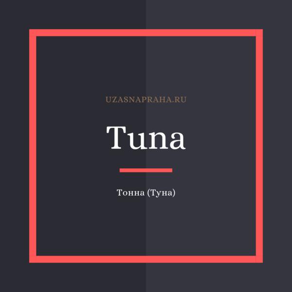 По-чешски тонна —Tuna