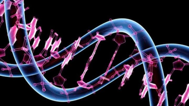 DNA_promo