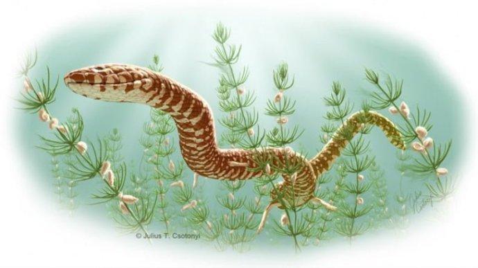 Parviraptor estesi, Kretas döneminde yaşadı. [Fotoğraf: Julius Csotonyi]