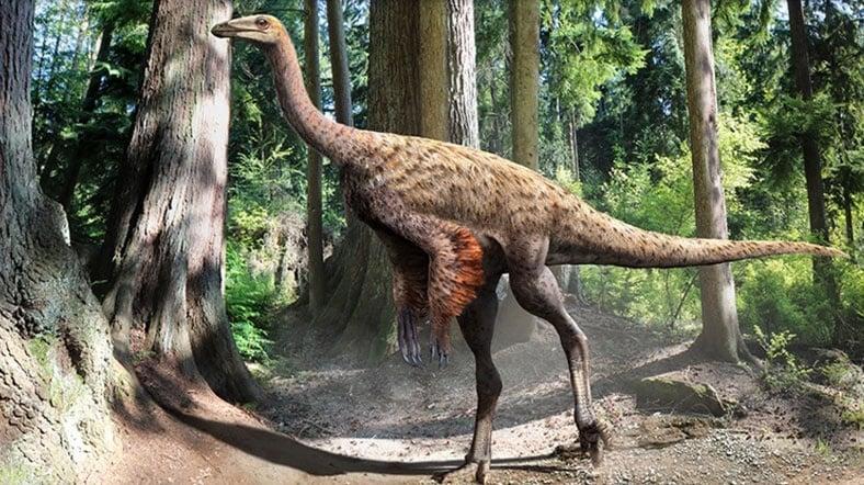 teropod-dinozor_0001