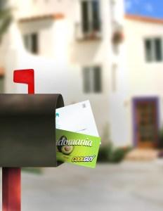 EDDM Mailer