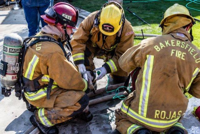 Пожарные спасают из канализации 8 щенков лабрадора, а затем узнают, что это вовсе не собаки