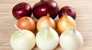 15 незаменимых продуктов для нашего организма