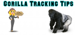 Gorilla Tracking Tips