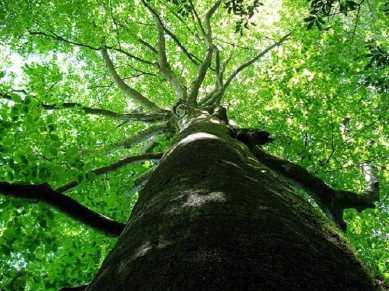 Путешествие в национальный природный парк Мтирала