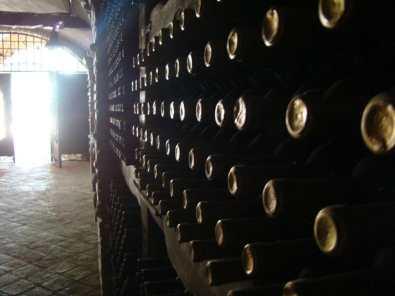 Полезные советы любителям вина, оказавшимся в Грузии
