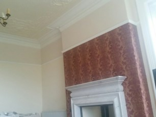 Camoid ceiling completed