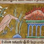 Fantastic Beasts in Medieval Art