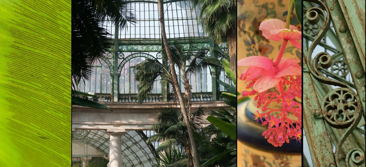 The Royal Greenhouses in Laeken