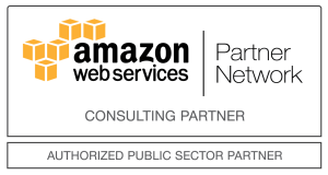 Public Sector Consulting Partner Light Large - Public_Sector_Consulting-Partner_Light_Large