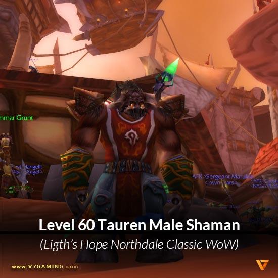 0029-lightshope-lightbringer-tauren-male-shaman-60