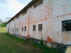 Fazenda_Ipanema-0047