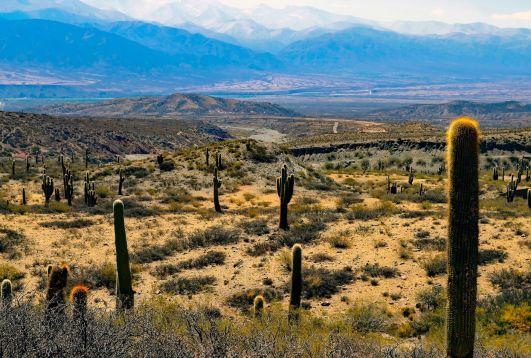 Desierto en Argentina