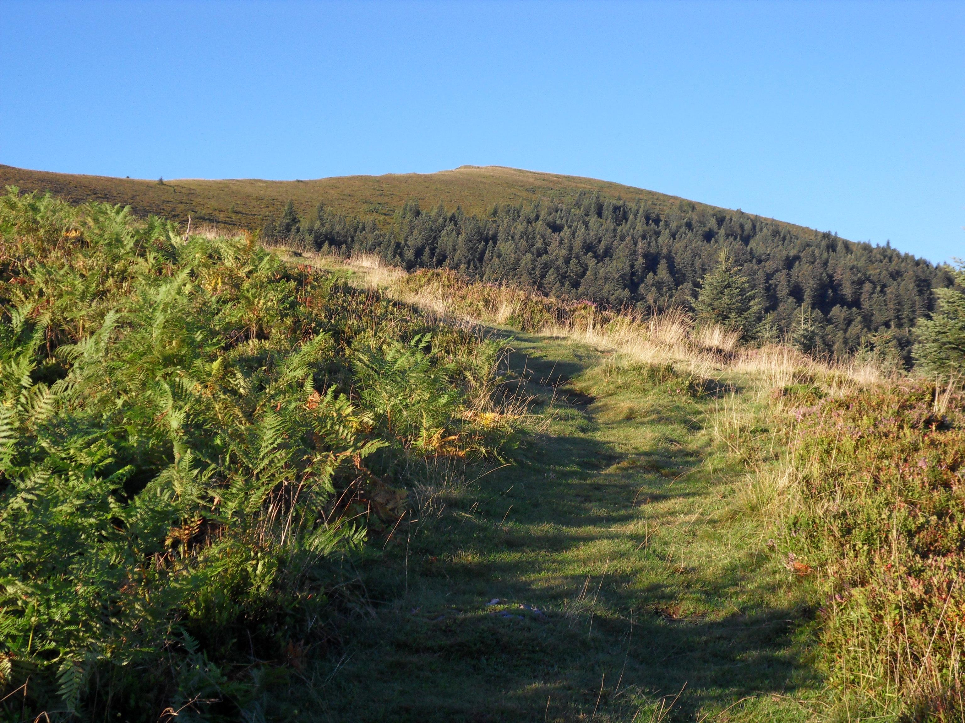 Le Péré : un endroit propice à la randonnée