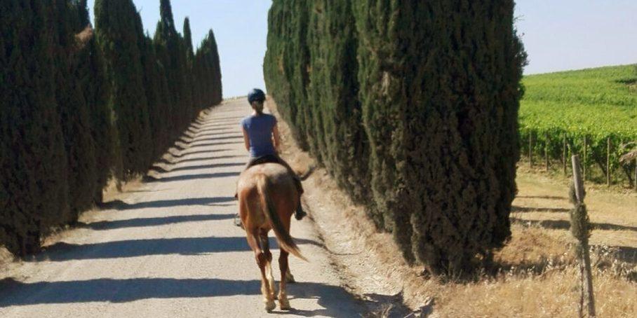 Val d'Arbia a Cavallo