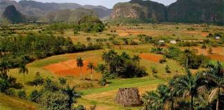 Vinales valley in the west of Cuba