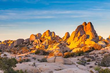 25 Best Places to Visit in California Joshua Tree National Park