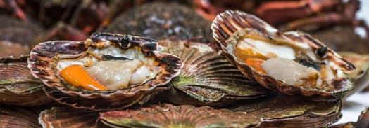 Inexpensive Seafood Restaurants Near Me