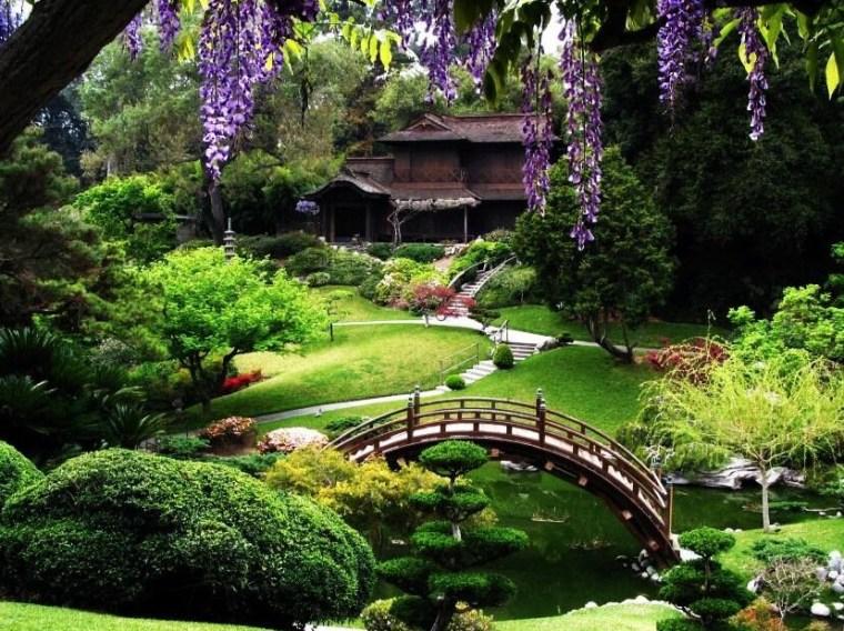 Whats On In San Fransisco - San Francisco Botanical Gardens