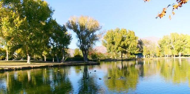 Las Vegas Natural Attractions - Floyd Lamb Park
