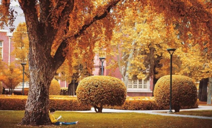 Fall Vacation Ideas in California