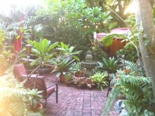 Mermaid Alligator Garden