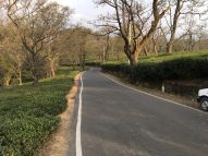 McLeodganj roads