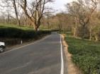 Dharamshala Roads
