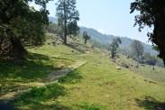 Khaliya Top Trail