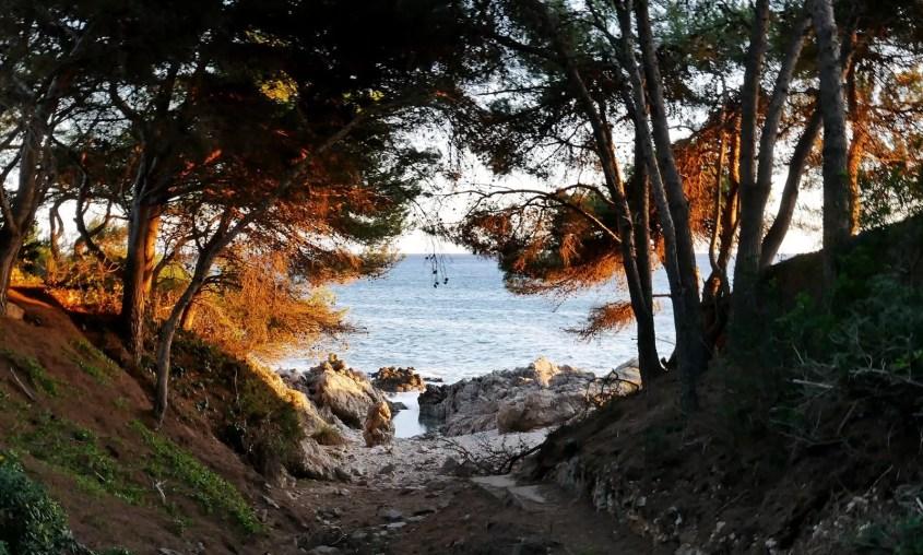 costa dels pins majorca