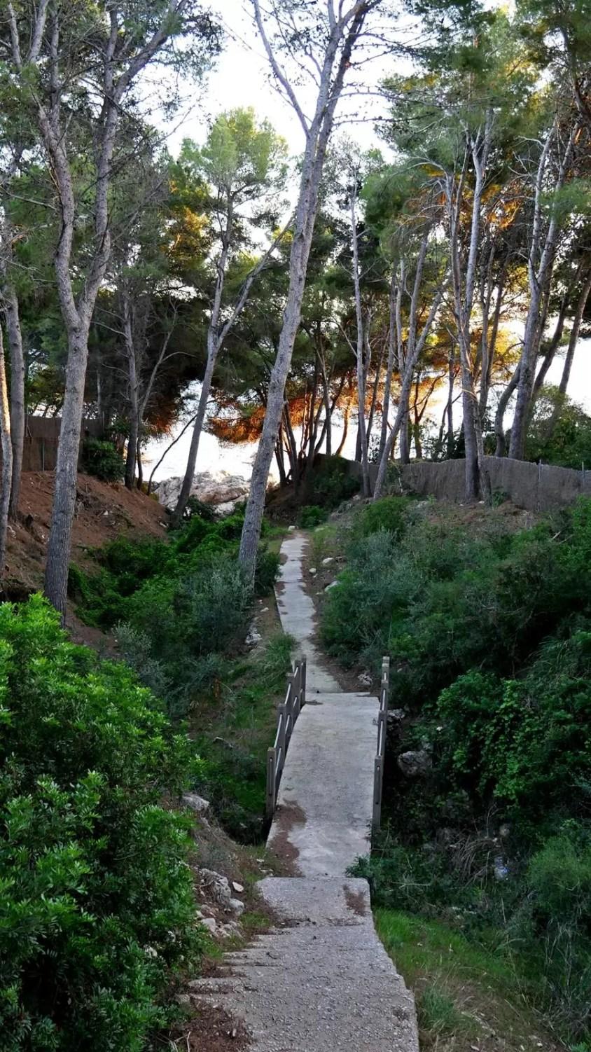 costa dels pins majorka